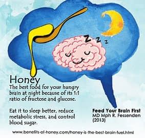 hibernation diet brain food poster