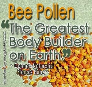 bee pollen is the greatest body builder