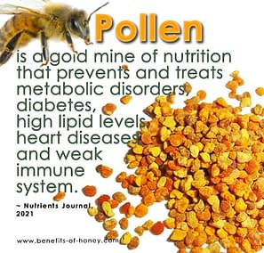 bee pollen is a gold mine of nutrition