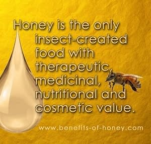 honey bee facts honey the only insect-created medicinal food